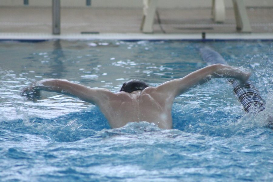 Boys Swimming Preview; Jump Right In!