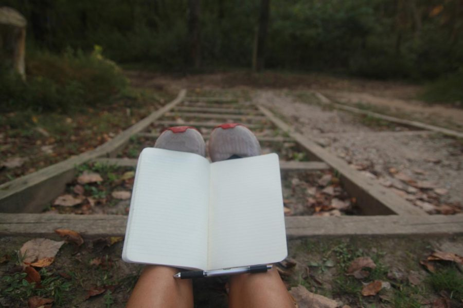 Journaling, exercising, and spending time outside provide numerous mental benefits.