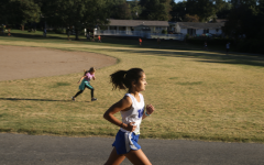 Cross Country State Recap: Ava Hollmann Finishes Ninth, Boys Team Finishes Fifth