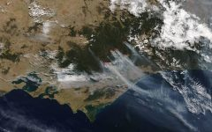 Australia in Ashes