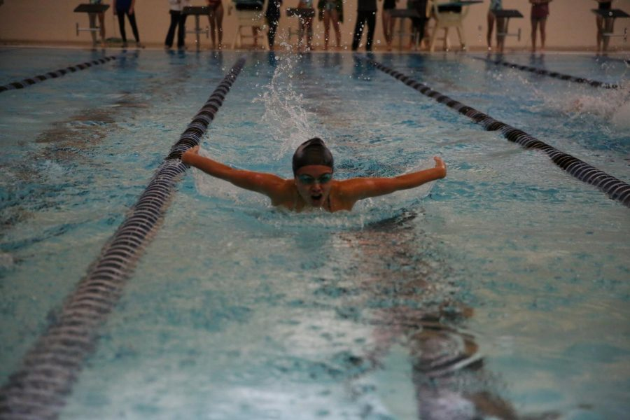 Girls Swimming Qualifies for State in a Variety of Events