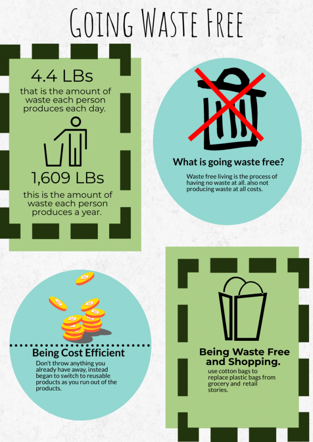 Infographic+of+why%2C+how%2C+ways%2C+and+cost+of+being+waste+free.