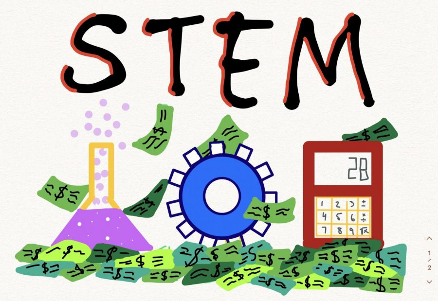 STEM: The Biggest Disappointment of the 21st Century