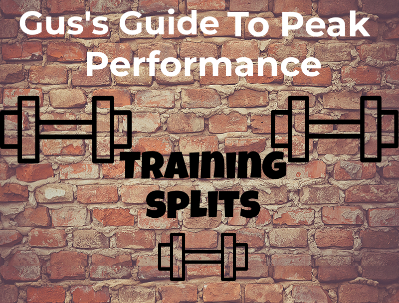 Training Splits