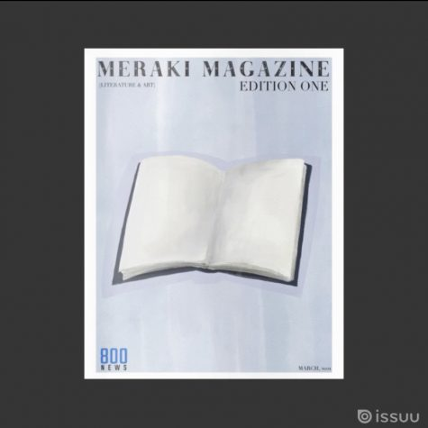 This was the last issue of the meraki magazine. This is showcasing the idea that book can be your canvas.