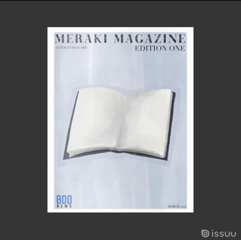 This+was+the+last+issue+of+the+meraki+magazine.+This+is+showcasing+the+idea+that+book+can+be+your+canvas.+