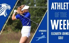 Ellie Johnson places third at her final state golf tournament.